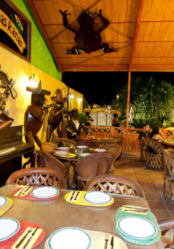 Iguanas Ranas Castilleja